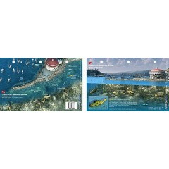 Avalon in Catalina Island, California (8.5 x 5.5 Inches) (21.6 x 15cm) - New Art to Media Underwater Waterproof 3D Dive Site Map