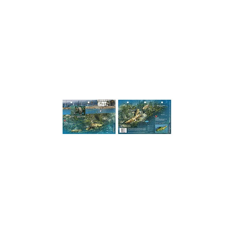 Kimset in Catalina Island, California (8.5 x 5.5 Inches) (21.6 x 15cm) - New Art to Media Underwater Waterproof 3D Dive Site Map
