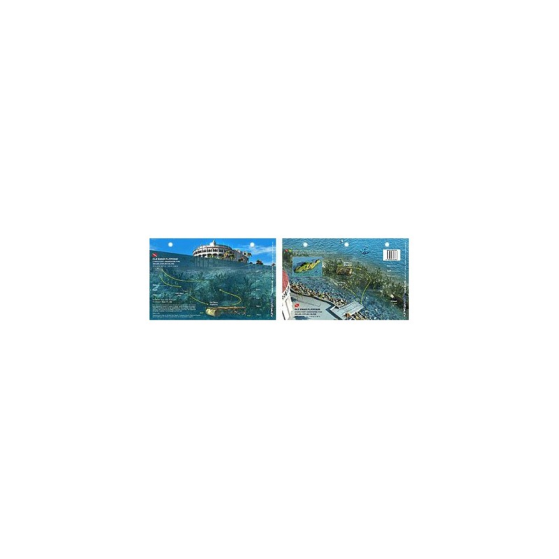 Old Swim Platform in Catalina Island, California (8.5 x 5.5 Inches) - New Art to Media Underwater Waterproof 3D Dive Site Map