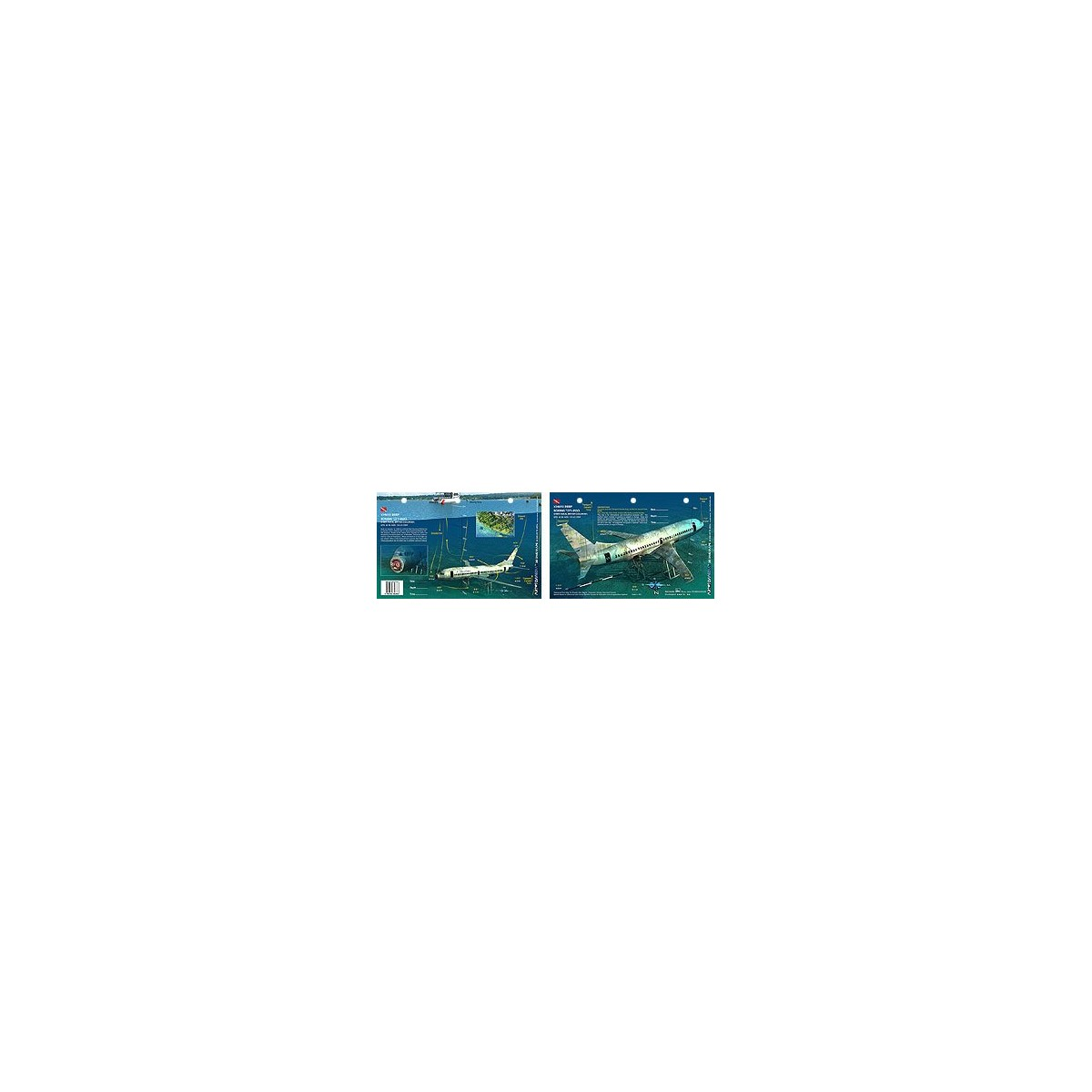 Xihwu Boeing 737 in Chemainus, British Columbia, Canada (8.5 x 5.5 Inches) - New Art to Media Underwater Waterproof 3D Dive Site